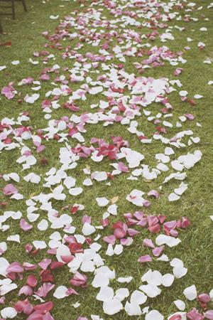 rose petals spred in wedding