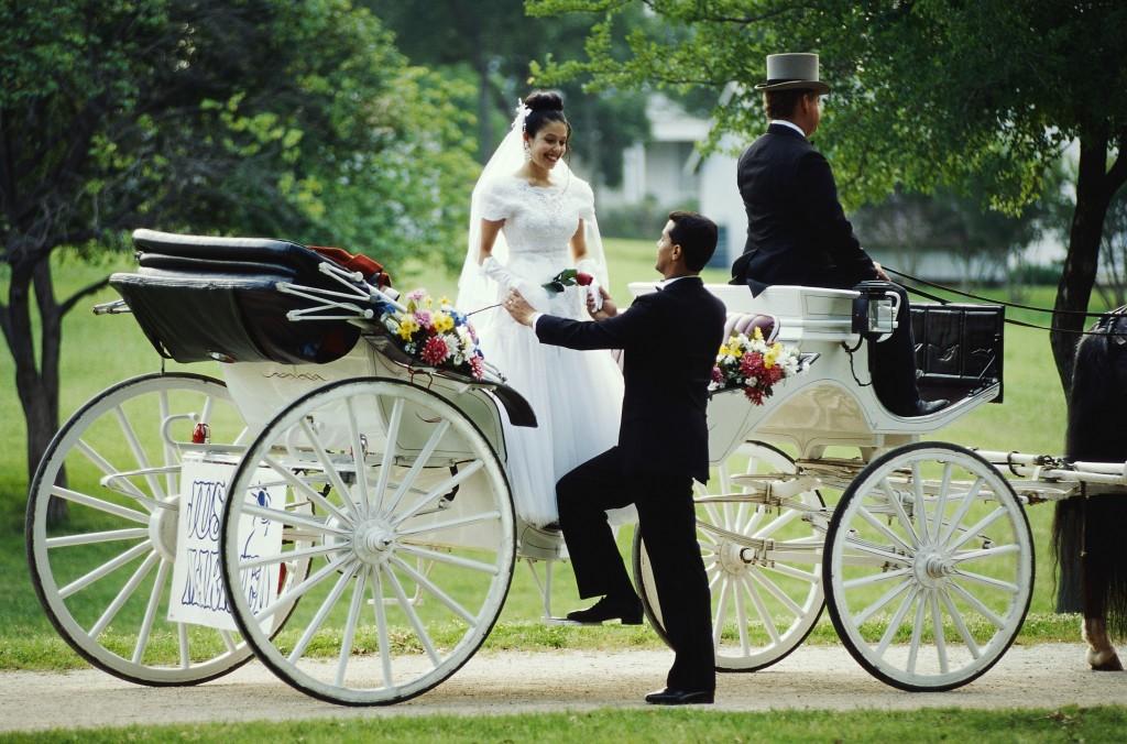 togetherness-horse-cart
