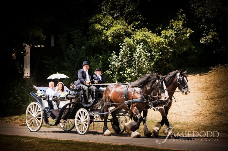 horse-driven cart