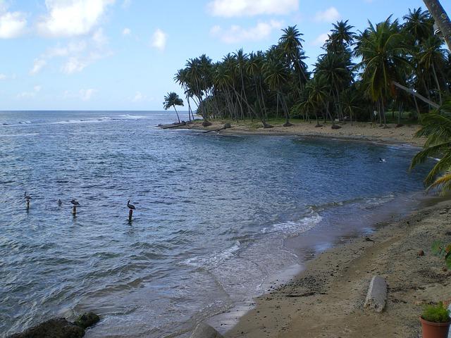 Puerto Rico caribbean sea