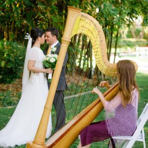 harp at weddings
