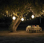 Timeless Events And Rentals party arrangement