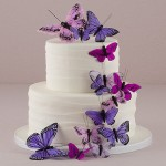 butterfly cake sets