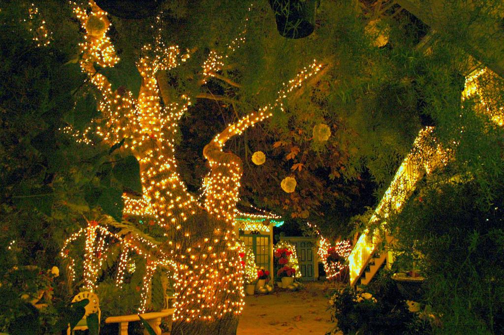 Tree Wrap lights for wedding decoration
